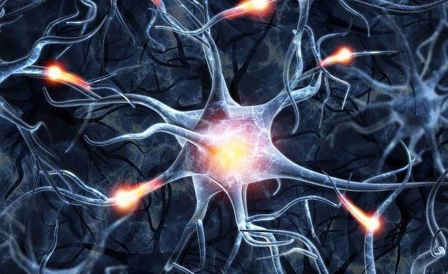 нейрон гидрафинил