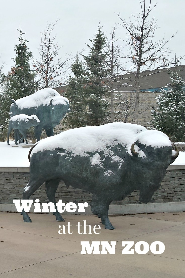 Winter at the Minnesota Zoo in Apple Valley is the most magical time of the year. The tropics are always warm and you can get up close and personal with most of the Animals.