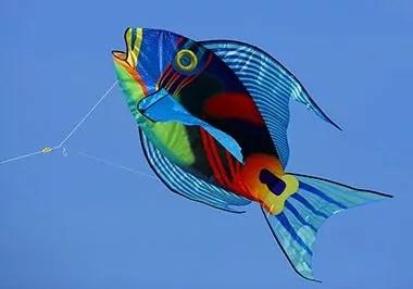 kite_festival_3