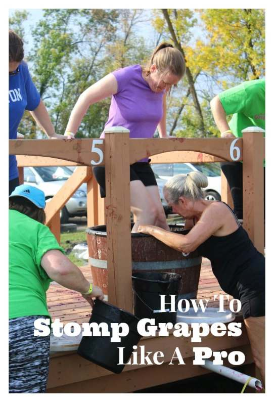 Grape Stomps can be lots of fun, but lots of work. If you've just entered a competition, make sure you know what you're getting yourself into.