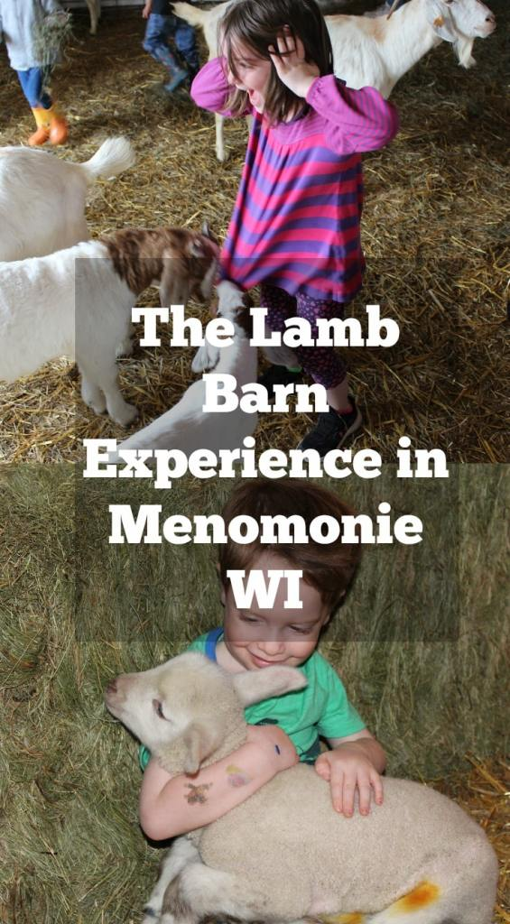 Spring and Baby Animals go hand in hand. But have you ever held one? Your kids will love this experience in Menomonie Wisconsin