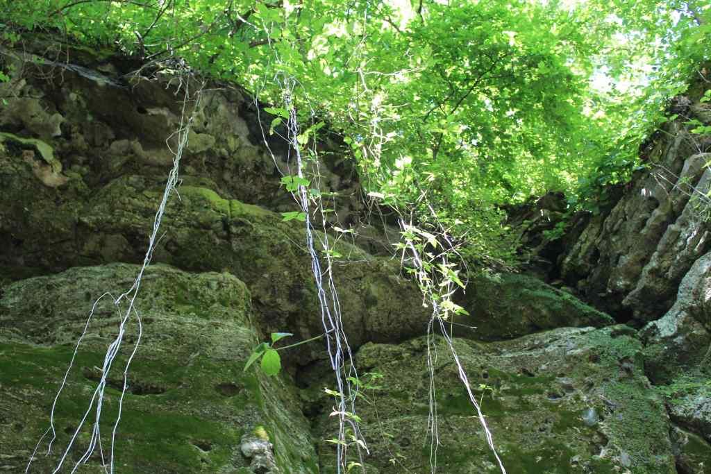 Minneopa Falls Trail