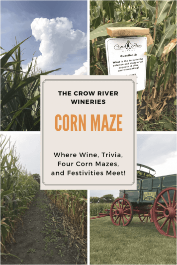 Wine, Trivia and Corn Maze. The Crow River Winery Corn Maze has it all and only an hour from the Twin Cities.