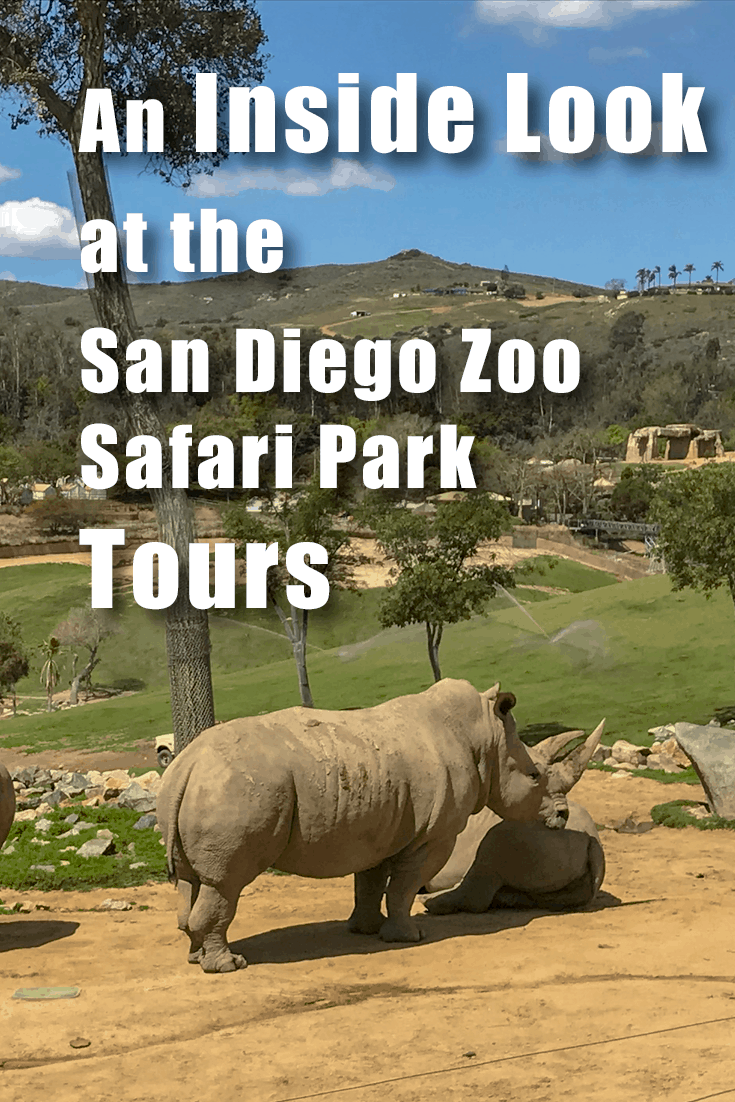 An Inside look at the San Diego Zoo Safari Parks Tours. Do you need them? Which one to pick? And how to get the best deal on discount tickets! Family Friend | Southern California | Safari Tour | California | US | Rino | Best Zoos in the US