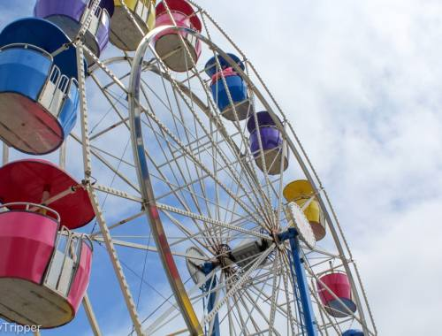 The Ultimate List of County Fairs in MN