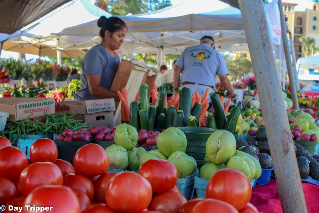 Marco Island Farmers Market