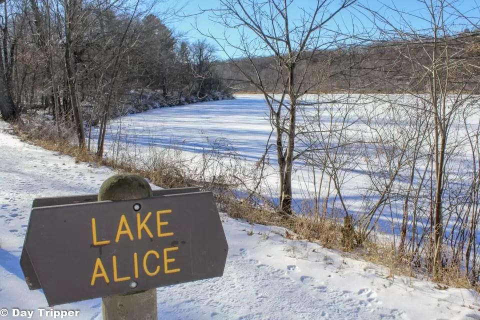 Lake Alice Lake at William O'Brien State Park