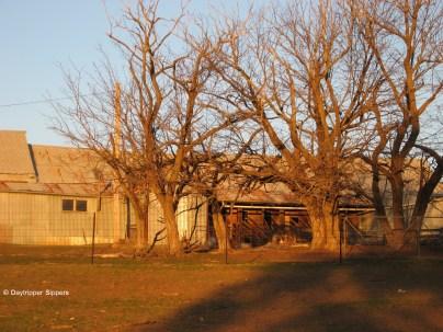 'Mylora' shearing shed, Illalong Road South, New South Wales