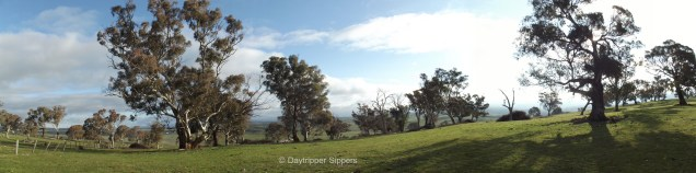 Hilltop panorama, Yass Valley, New South Wales, Australia