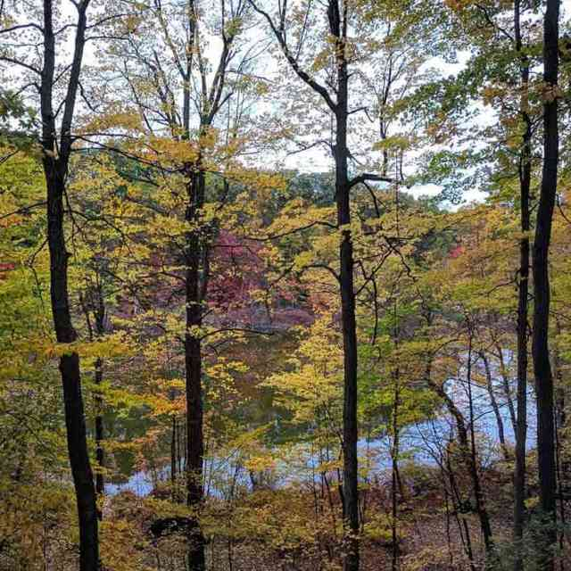 30 day trips within 30 minutes of Rochester: Mendon Ponds Park