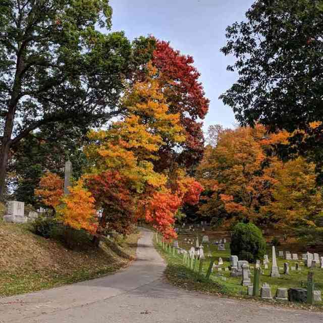 Mount Hope Cemetery Rochester