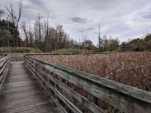 Thomas Creek Wetlands Walk