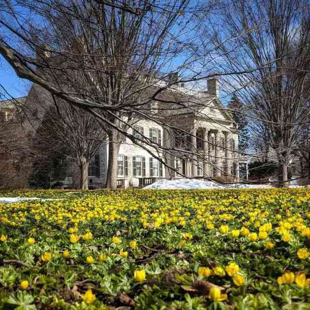 More day trips within 30 minutes: George Eastman Museum