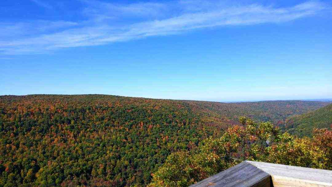 Fall Foliage: 5 Breathtaking Views Near Rochester