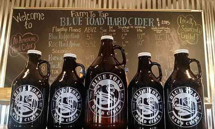 Craft Breweries in Monroe County - Blue Toad Hard Cider