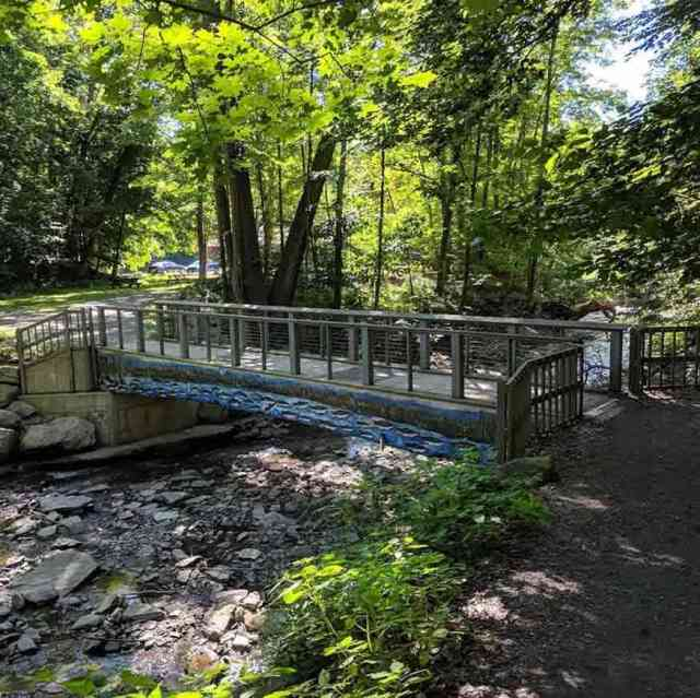 Grimes Glen Bridge