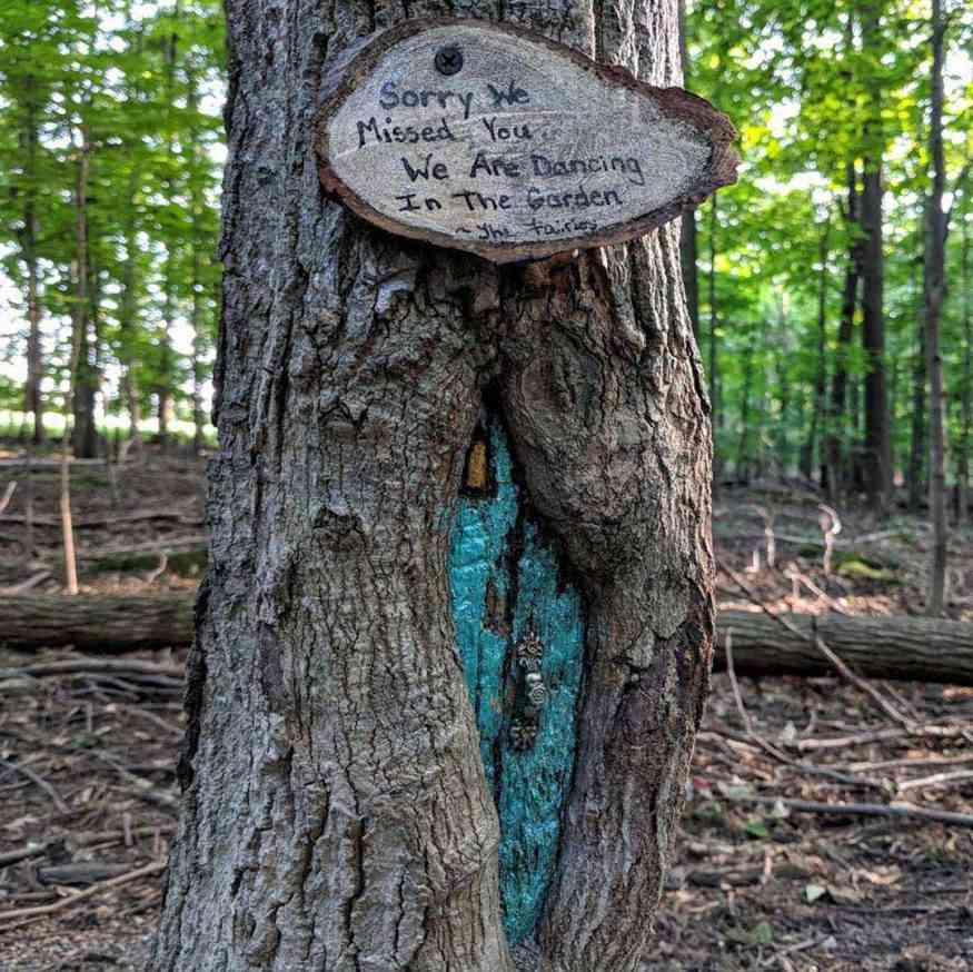 Tinker Park fairy house