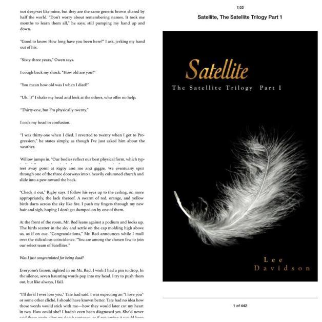 Book: Satellite: The Satellite Trilogy, Part I