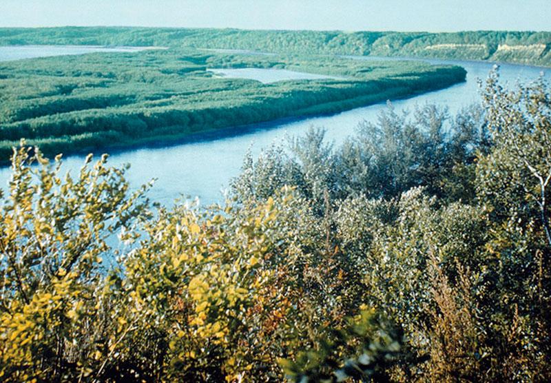 Река Амур в среднем течении.