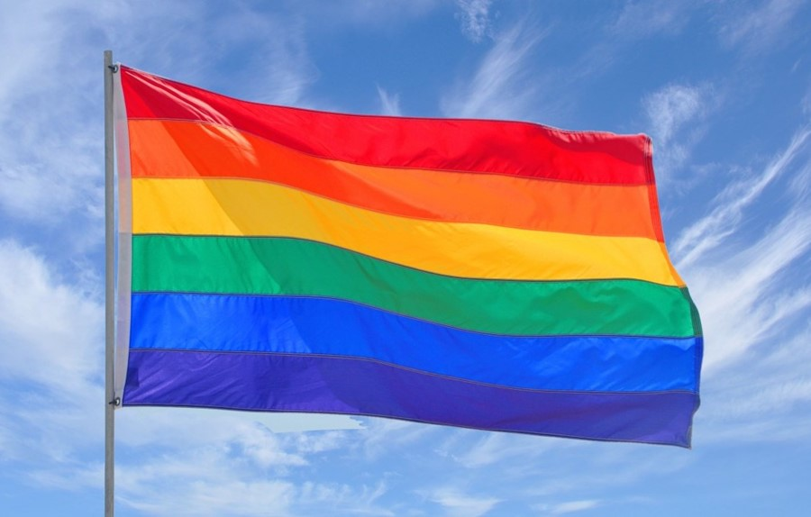 Image result for gays flag