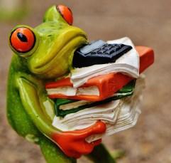 frog-1339904_1920.jpg