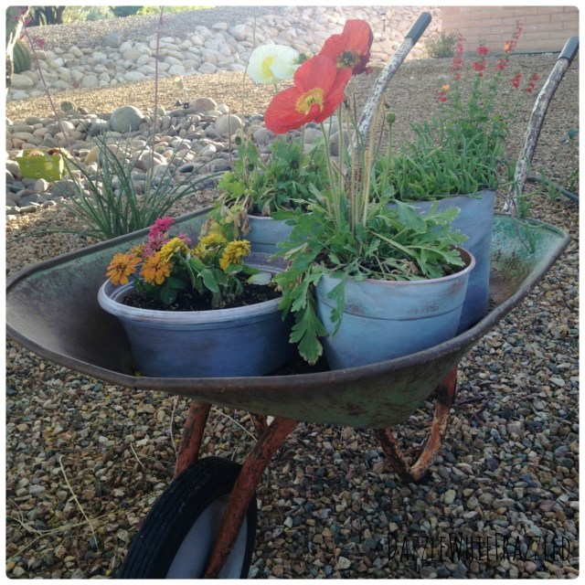 Fill vintage wheelbarrow with DIY aged and weather plastic flower pots.