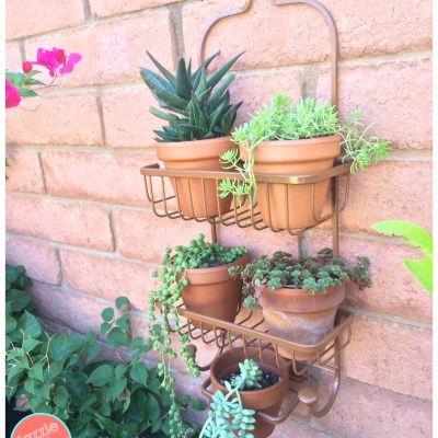 How to make a shower caddy vertical planter.