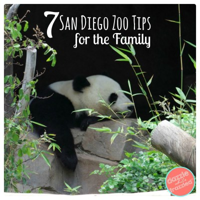 Tips and Tricks for visiting the San Diego Zoo with the family | DazzleWhileFrazzled.com