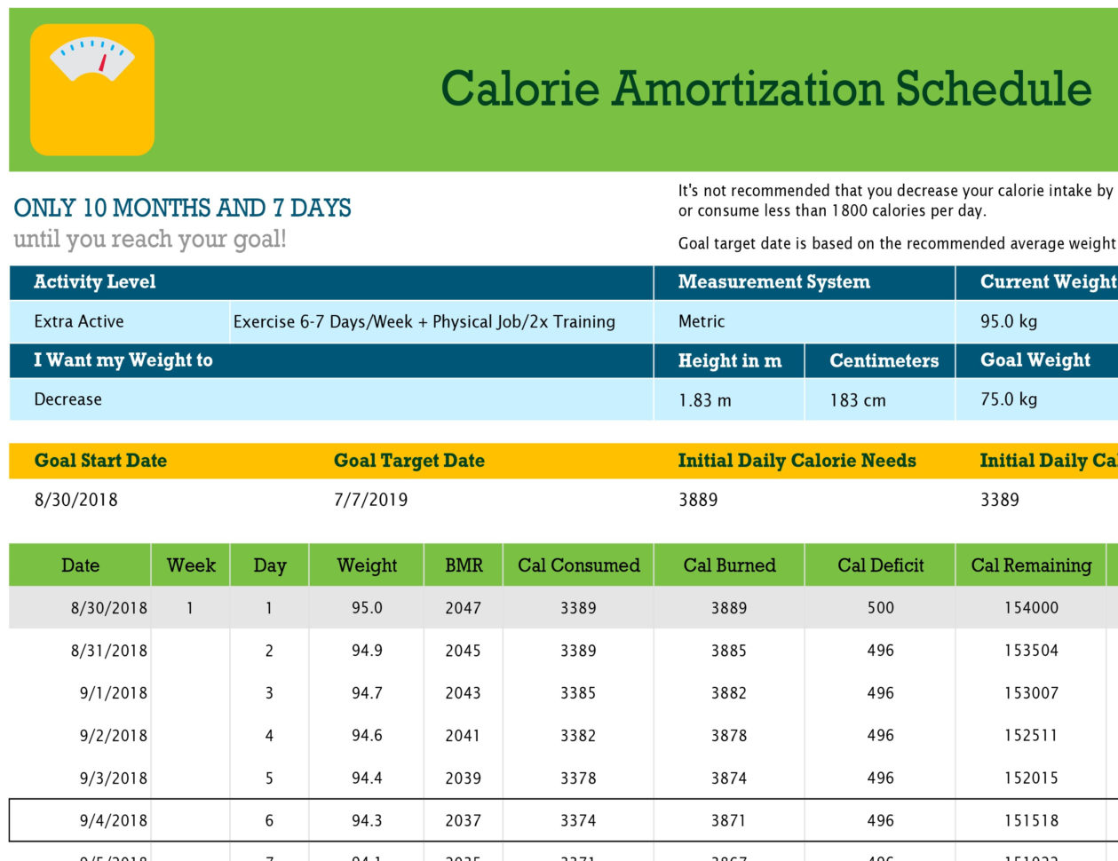 Calorie Intake Spreadsheet Throughout Calorie Amortization
