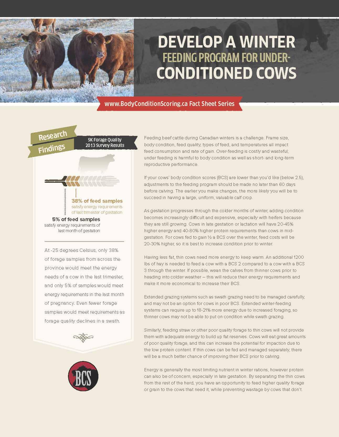 Cattle Herd Management Spreadsheet Throughout Body