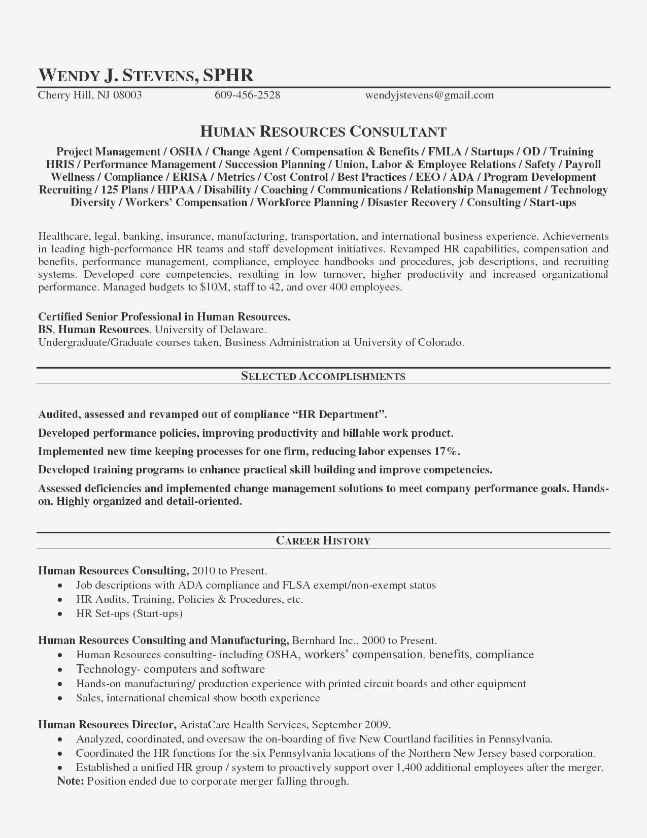 Hr Audit Spreadsheet In Sample Resume Business Process