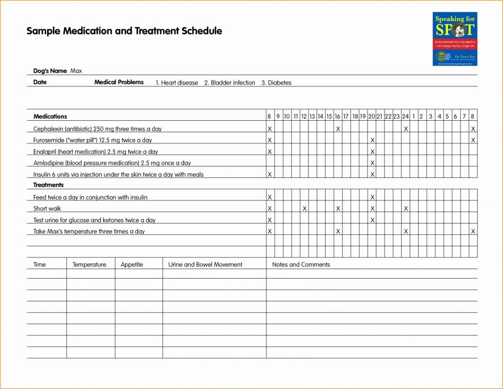 Medical Lab Results Spreadsheet In Diabetes Testing