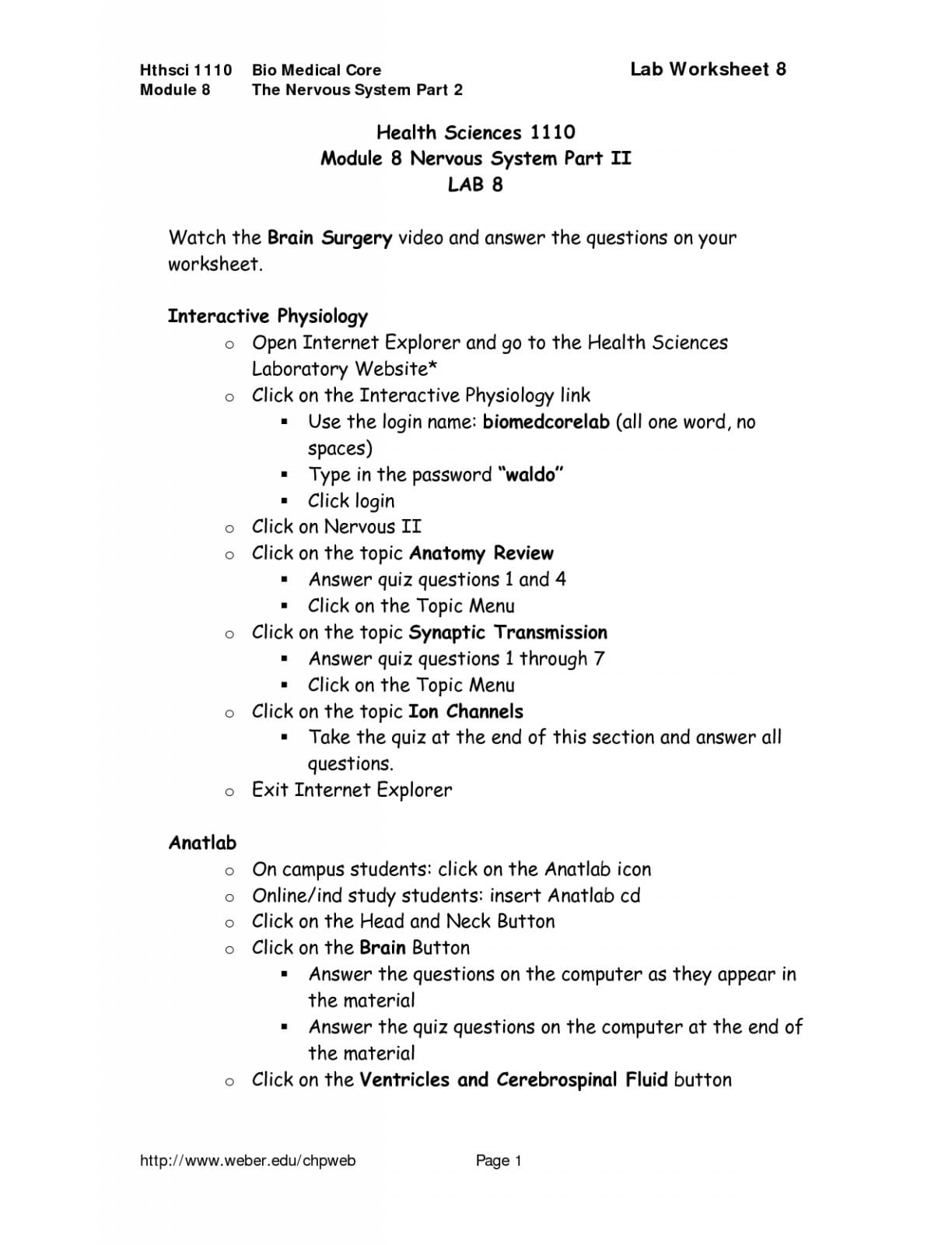 Brain Lab Worksheet