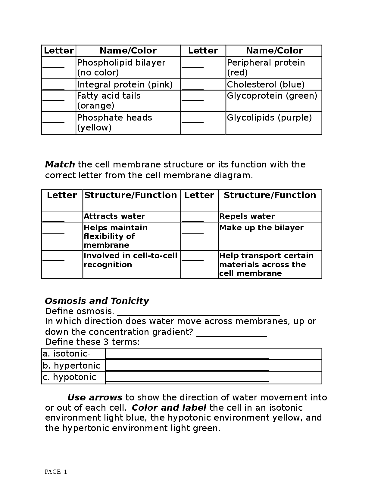 Cell Membranes Worksheet Docsity