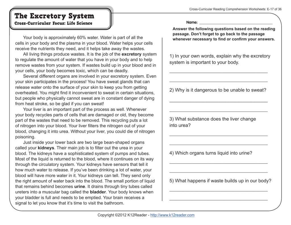 Crosscurricular Reading Comprehension Worksheets E
