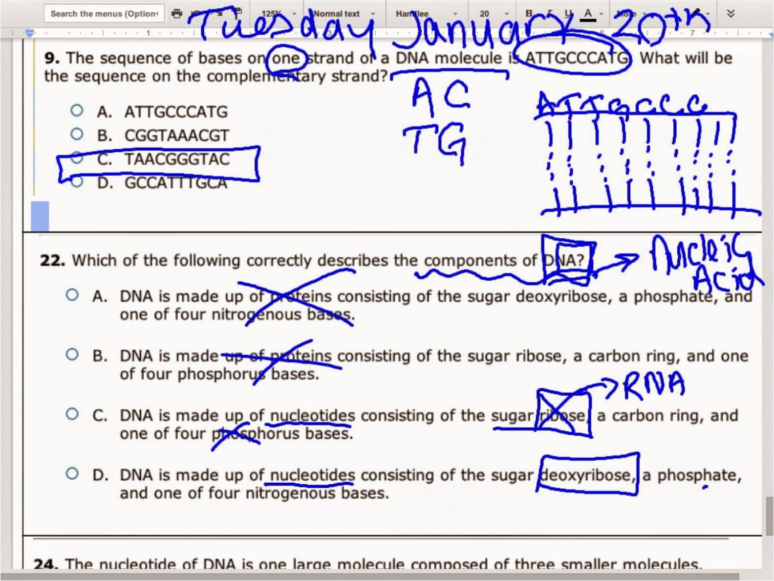 Dna Molecule And Replication Worksheet Answers