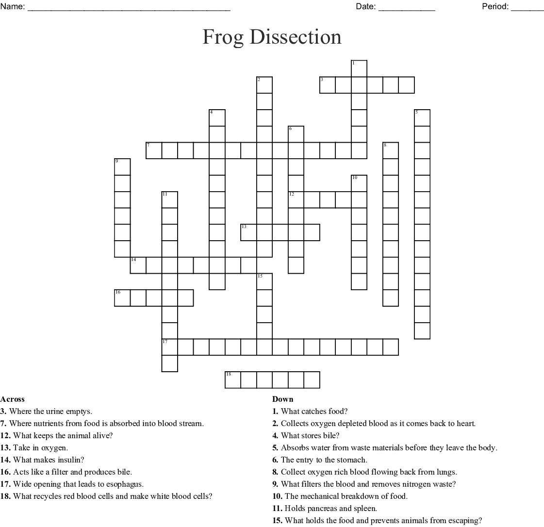 Frog Dissection Worksheet