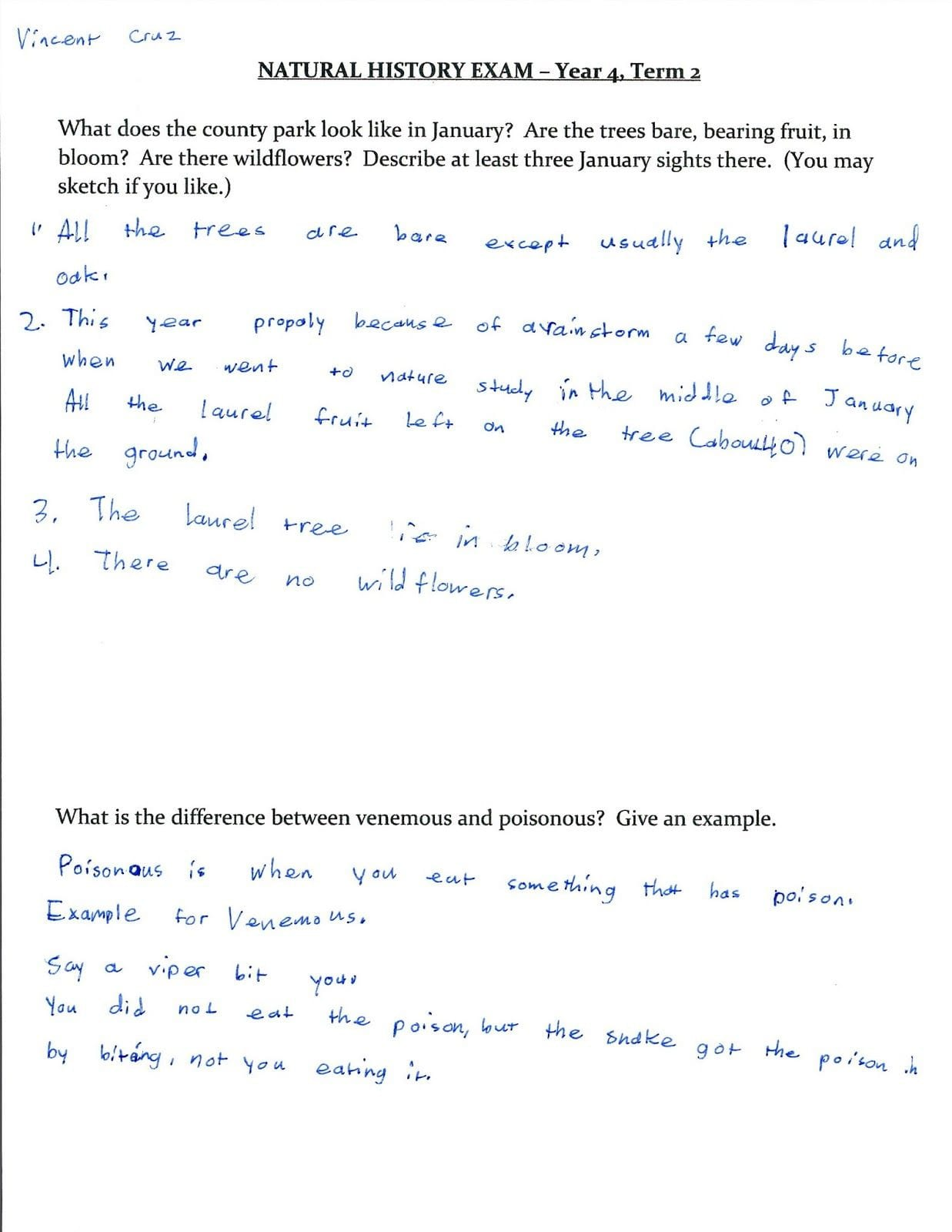 History Channel French Revolution Worksheet Answers