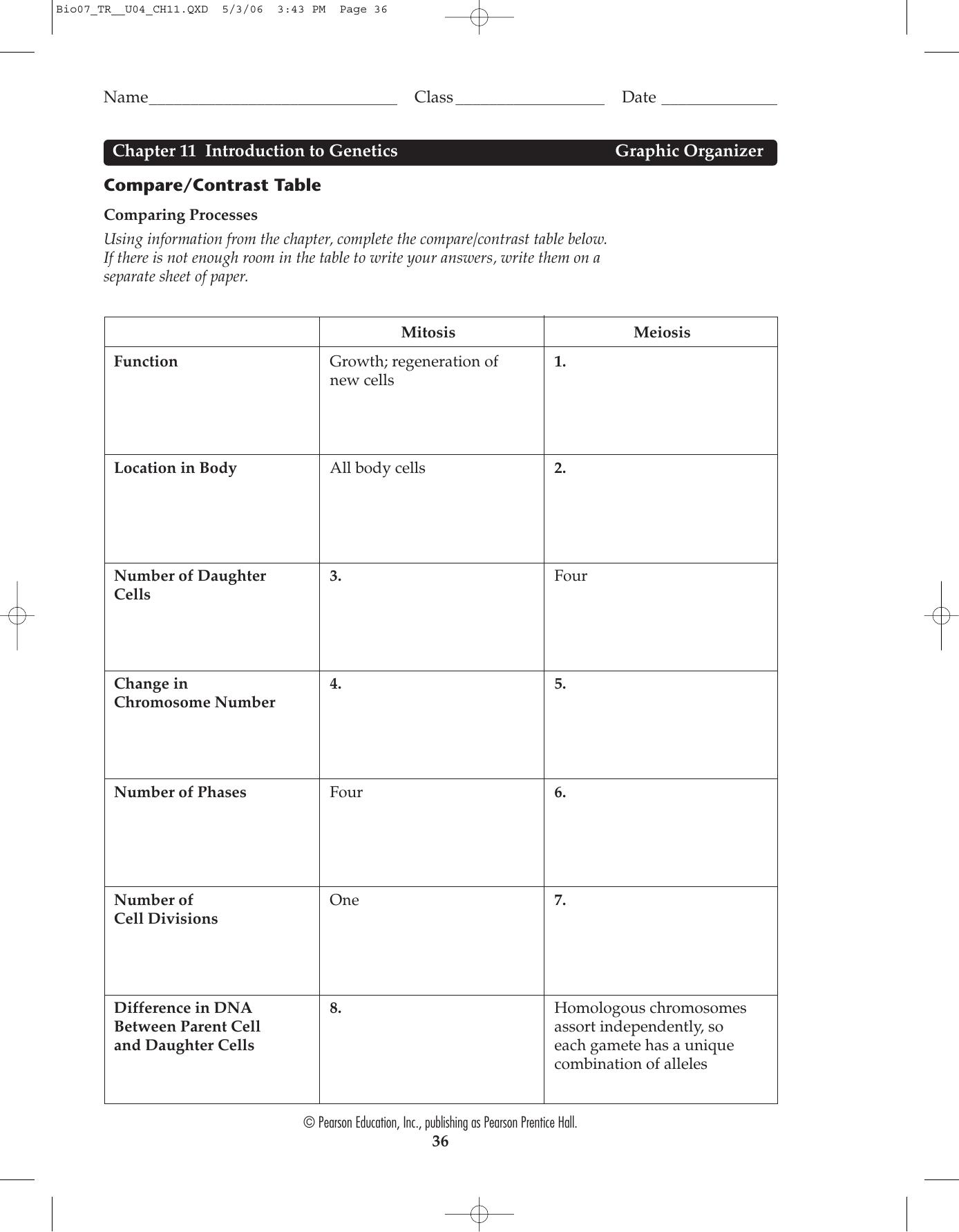 Prentice Hall Biology Worksheets