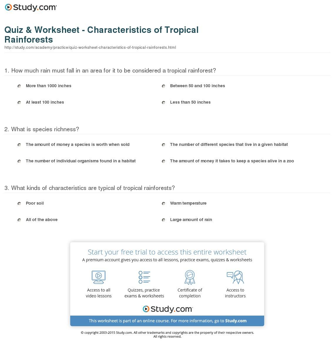 Tropical Rainforest Worksheet
