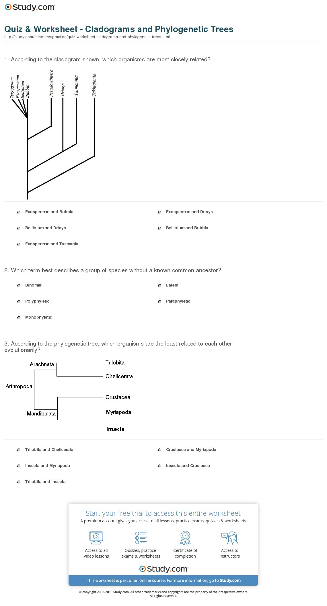 Quiz Worksheet Cladograms And Phylogenetic Trees Study
