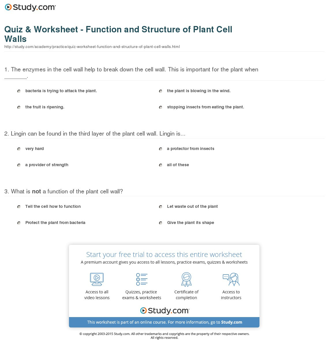 Quiz Worksheet Function And Structure Of Plant Cell
