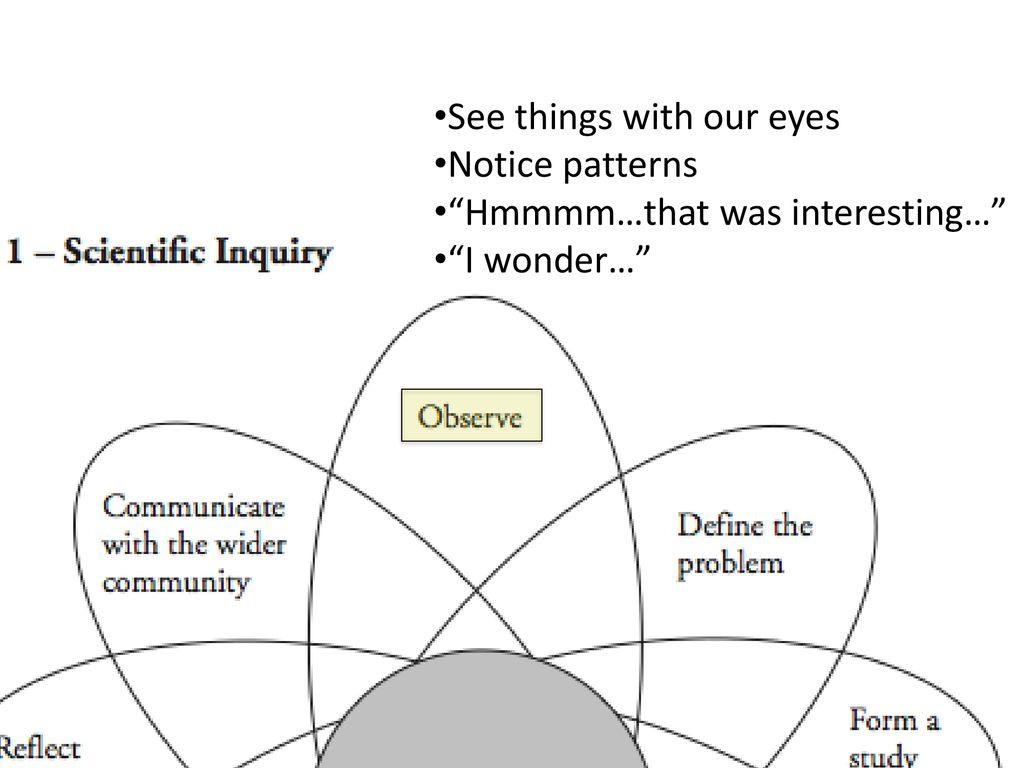 Scientific Inquiry Worksheet Answer Key