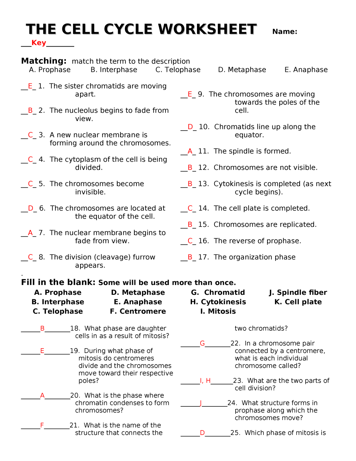 Thecellcycleworksheet With Answers Biog101