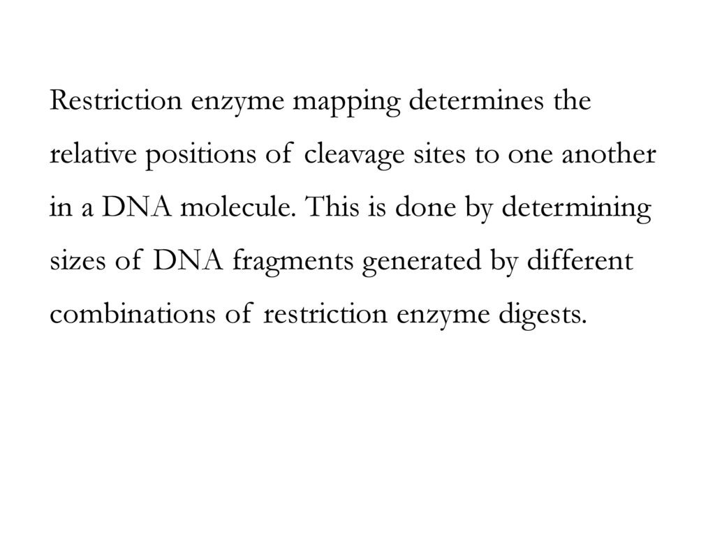 Restriction Enzyme Worksheet Answers
