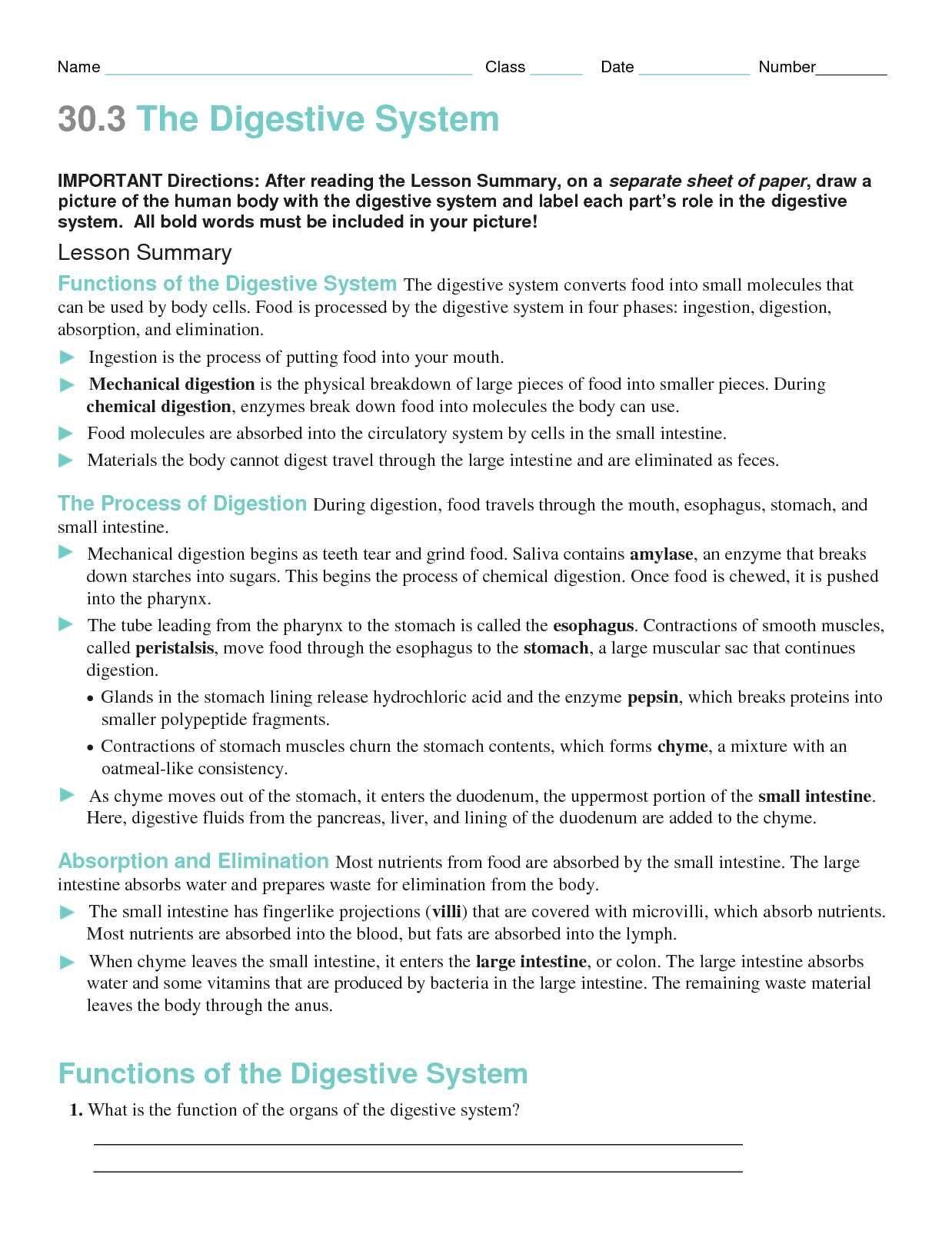Ves Review Worksheet Answer Key
