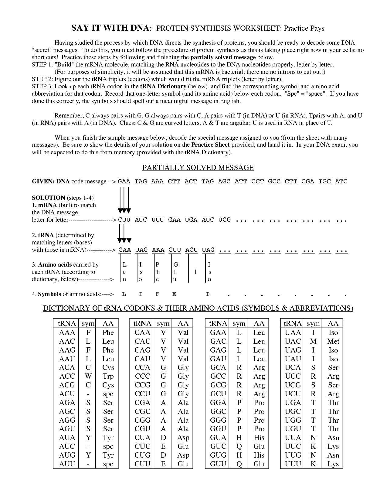 Worksheet On Dna Rna And Protein Synthesis Fatmatoru