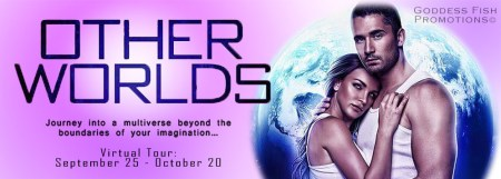 Other worlds tour banner