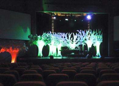 Paper trees06