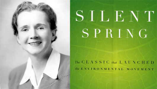 silent spring Reviewer walter sullivan was only the first of many to compare silent spring to harriet beecher stowe's novel uncle tom's cabin, the most controversial american.
